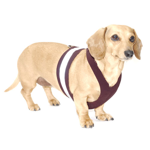 Raisin Brown Easy-Go Never-Choke Dachshund Harness