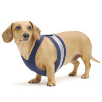 Navy Blue Easy-Go Never-Choke Dachshund Harness
