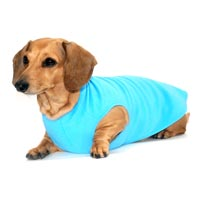 Sky Blue Dachshund Fleece Sweater