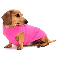 Petal Pink Dachshund Fleece Sweater