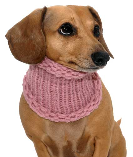 Blossom Pink Noodle Boodle Dachshund Neck Warmer