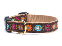 Garden Party Dachshund Collar
