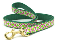 Green and Pink Genie Dachshund Lead
