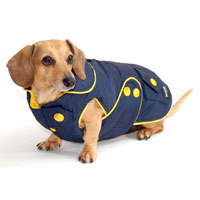 Navy Blue Blizzard Dachshund Parka with Thinsulate