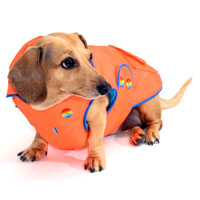Neon Orange Blizzard Dachshund Parka with Thinsulate