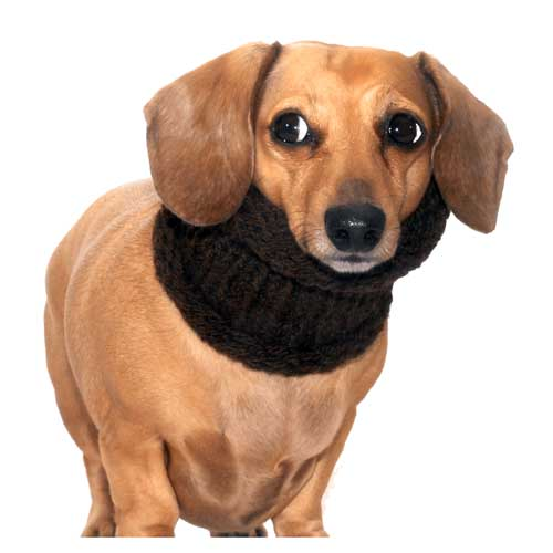 Chocolate Noodle Boodle Dachshund Neck Warmer