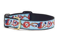 Poppy Dachshund Collar