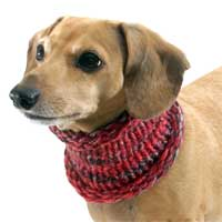 Marled Cranberry Noodle Boodle Dachshund Neck Warmer