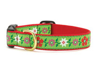 Poinsettia Dachshund Collar