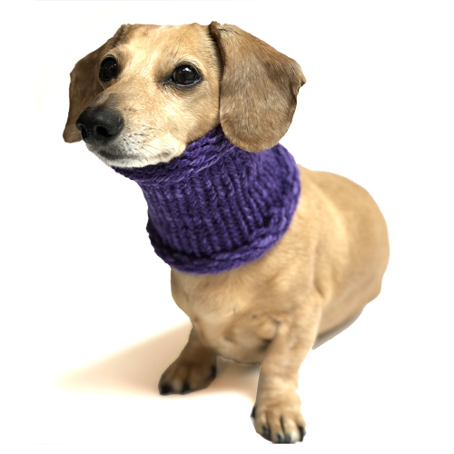Marled Purple Noodle Boodle Dachshund Neck Warmer