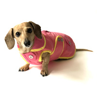 Strawberry Lemonade Sorbet Dachshund Raincoat
