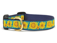 Sunflower Dachshund Collar