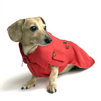 Cherry Red Dachshund Trenchcoat
