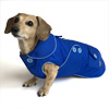 Bright Blue Blizzard Dachshund Parka with Thinsulate