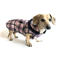 Reversible Princess Plaid Dachshund Coat