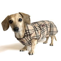 Reversible Grrrberry Plaid Dachshund Coat