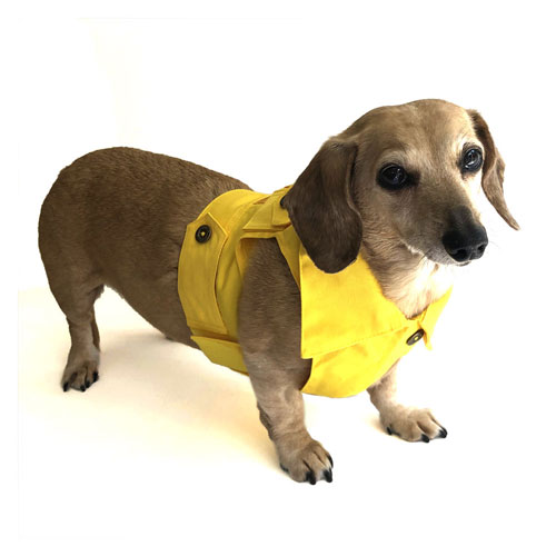 Sunshine Yellow Dachshund Jean Jacket