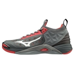 Mizuno Momentum Unisex Volleyball Shoes - 430261
