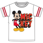 Youth Boys Stripe Sleeve Mickey Goofy Pluto Donald Team Tee, Gray Black