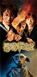 Beach Towel Harry Potter Revenge, 28x58 (No Namedrop)