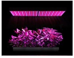 27w LED Plant Grow Light Indoor Growing 450 Red Blue