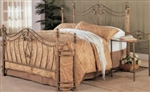 2 Piece Queen Brushed Gold Iron Headboard & Footboard Bed Set