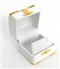 Earring Box White with Gold Corners/Clasp