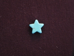 Star Turquoise Colored Howlite/Magnesite