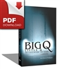 (Download) Big Q, Little Q: The Calm Before the Storm