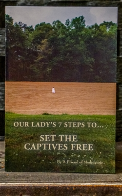 Our Lady's 7 Steps to...Set the Captives Free