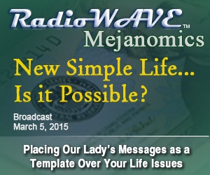 New Simple Life... Is it Possible? - Mejanomics March 5, 2015