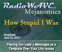 How Stupid I Was - Mejanomics April 30, 2015