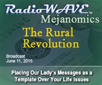 The Rural Revolution - Mejanomics June 11, 2015