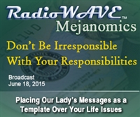 Don't Be Irresponsible With Your Responsibilities - Mejanomics June 18, 2015