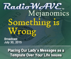 Something is Wrong - Mejanomics July 30, 2015