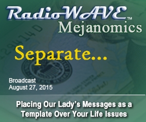 Separate... - Mejanomics August 27, 2015