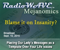 Blame it on Insanity? - Mejanomics September 10, 2015