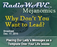 Why Don't You Want to Lead?- Mejanomics December 17, 2015