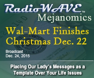 Wal-Mart Finishes Christmas December 22- Mejanomics December 24, 2015