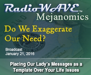 Do We Exaggerate Our Need?- Mejanomics January 21, 2016