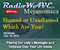 Shamed or Unashamed... Which Are You?- Mejanomics February 18, 2016
