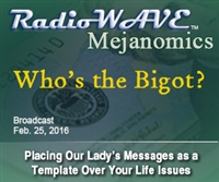 Who's the Bigot?- Mejanomics February 25, 2016