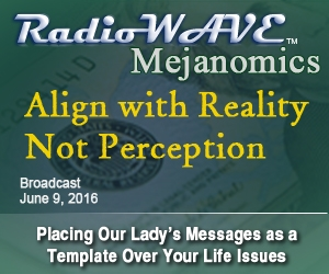 Align with Reality, Not Perception- Mejanomics June 9, 2016