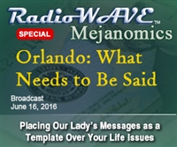 Orlando: What Needs to Be Said- Mejanomics June 16, 2016