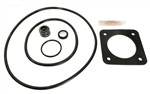 Sta Rite Dura Glas Seal Kit