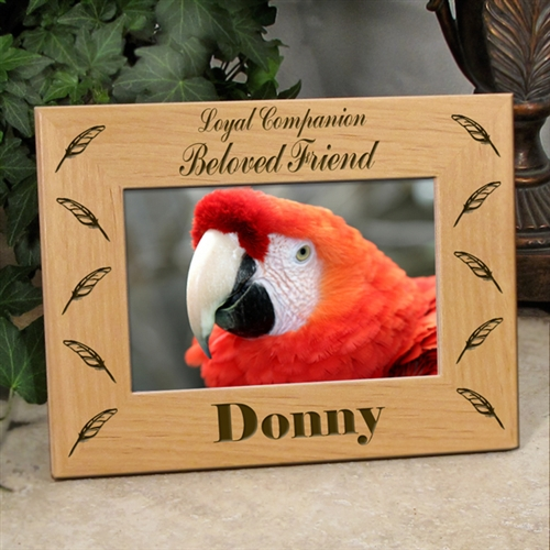 Memorial Bird Frames | Loss Of Parrot