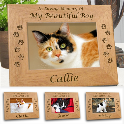 533fa60a0051 Cat Sympathy Frame Larger Photo Email A Friend