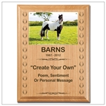 Create Your Own Horse Sympathy Plaque
