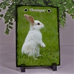Photo Slate For Bunny Lover