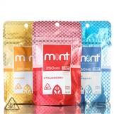 Gummy Chews By Mint Wellness 250mg - Pack of 10